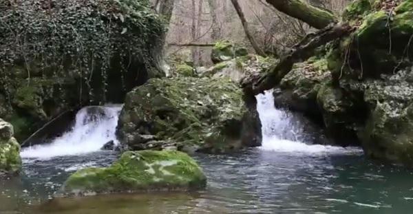 Il fiume Liri nel giorno di Natale, le suggestive immagini delle trote che risalgono la corrente