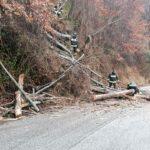 Frana blocca la strada provinciale, pronto intervento per ripristinare i collegamenti