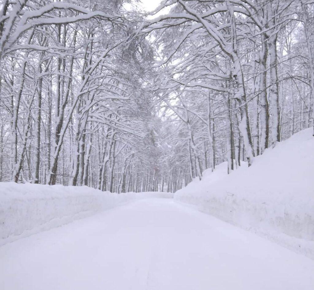 Opi, la strada provinciale 509 Forca d'acero è aperta alla viabilità