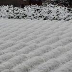 La Marsica si colora di bianco con la prima neve della stagione