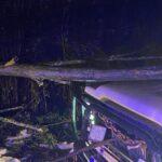 Albero cade su di un'autovettura