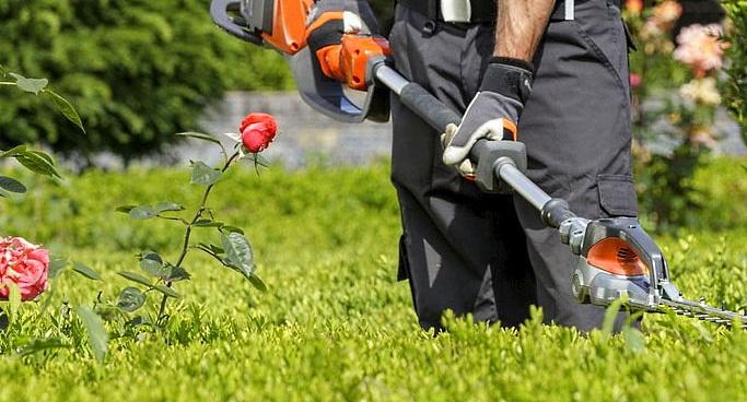 Il Comune di Carsoli predispone 4 borse lavoro destinate a cittadini svantaggiati