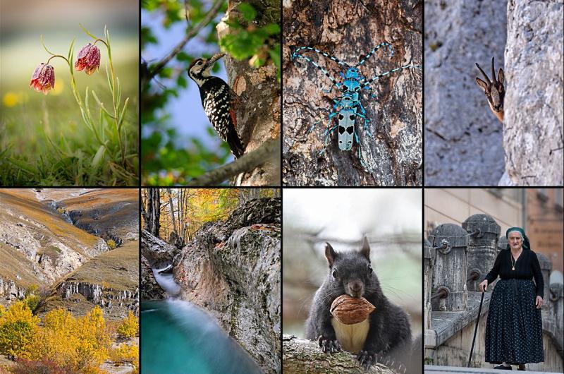 Calendario 2021 del Parco Nazionale d'Abruzzo, Lazio e Molise