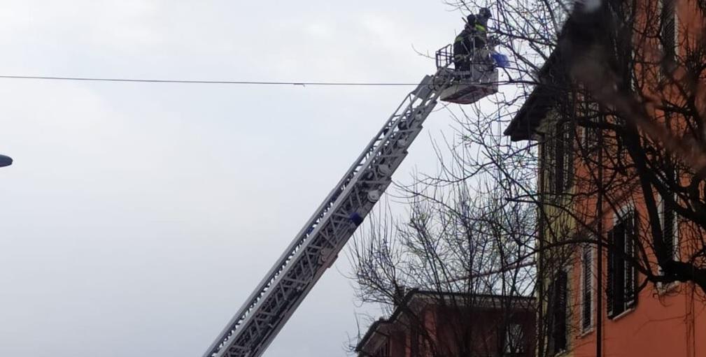 Vigili del fuoco di Avezzano