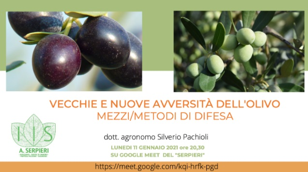 Videoconferenza dell'Istituto Agrario A. Serpieri di Avezzano sul tema: