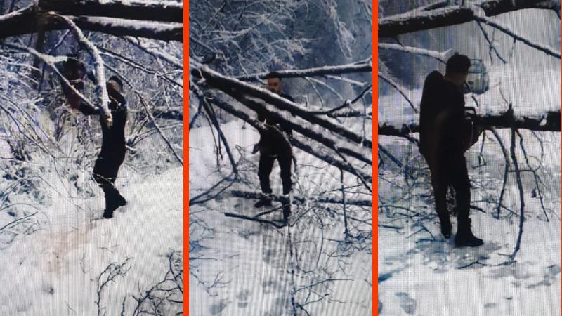 Atteso al reparto Covid di Avezzano e bloccato nella neve, operatore sanitario libera la strada a colpi di motosega