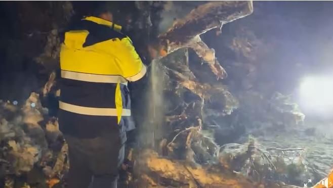 Protezione Civile a lavoro per rimuovere gli alberi caduti sulla strada