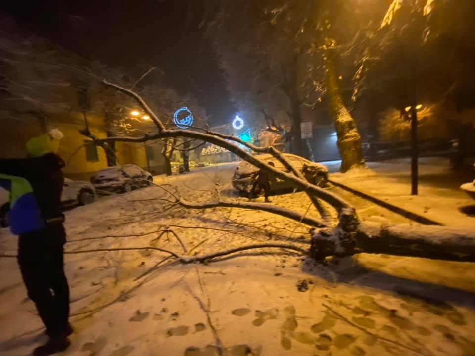 """Tagliacozzo, albero cade sulla strada, interruzioni di energia elettrica. Il sindaco Giovagnorio """"Evitare di passare e parcheggiare sotto gli alberi"""""""