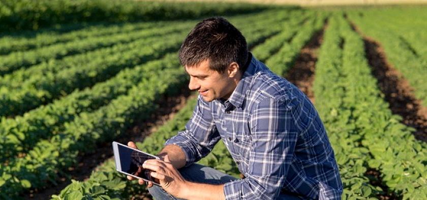 Formazione giovani agricoltori e imprenditori agricoli e forestali: risorse per 1,9 mln di euro
