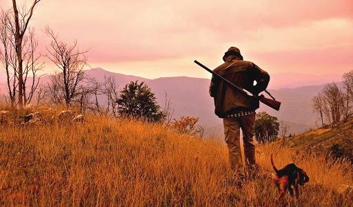 Chiusura della stagione venatoria in Abruzzo. WWF: registrati quattro gravi incidenti di caccia