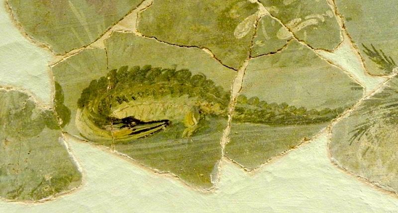 Il coccodrillo di Alba Fucens, prezioso dettaglio artistico del I sec. a.C.