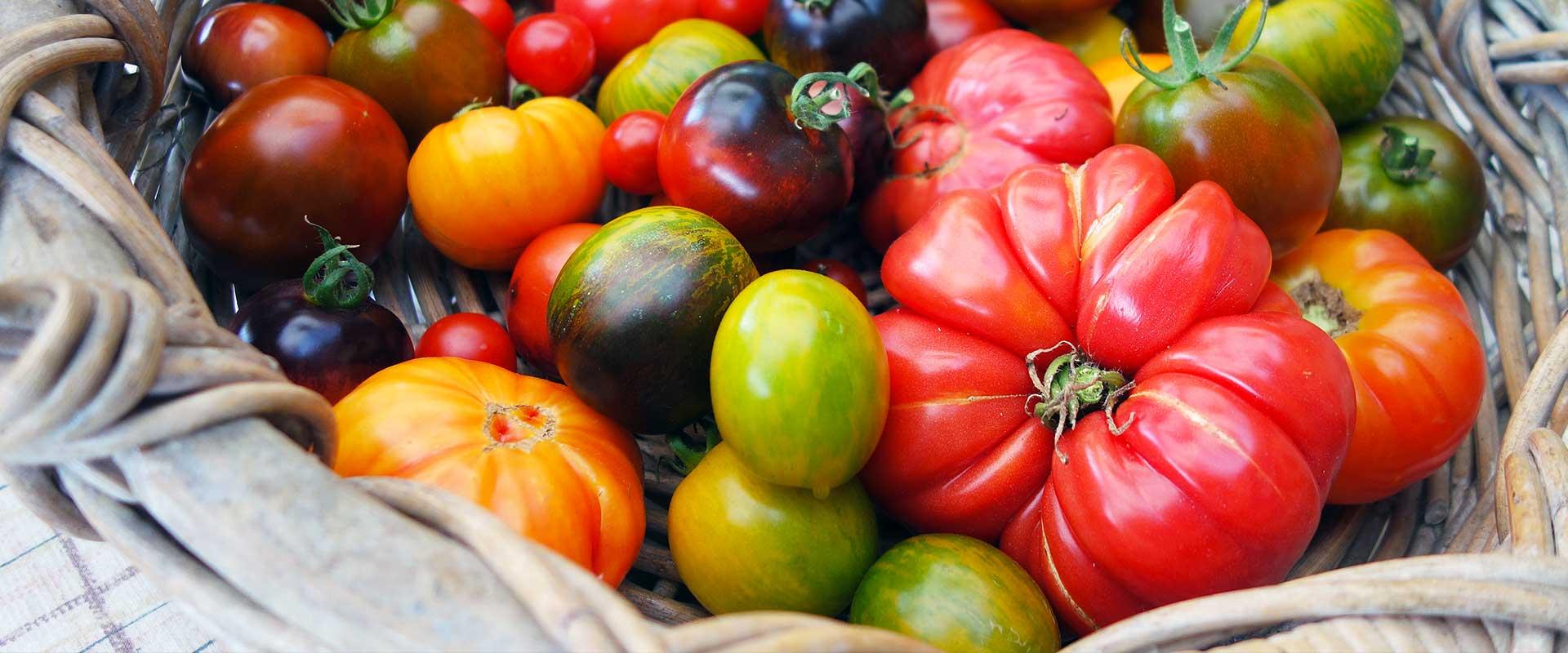 """""""Pensare diversamente la gestione delle attività del pomodoro da industria e da mensa"""": videoconferenza dell'Istituto """"A. Serpieri"""""""