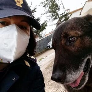 Yoghi, il poliziotto a 4 zampe che aiuta i soccorritori impegnati nelle ricerche sul Velino