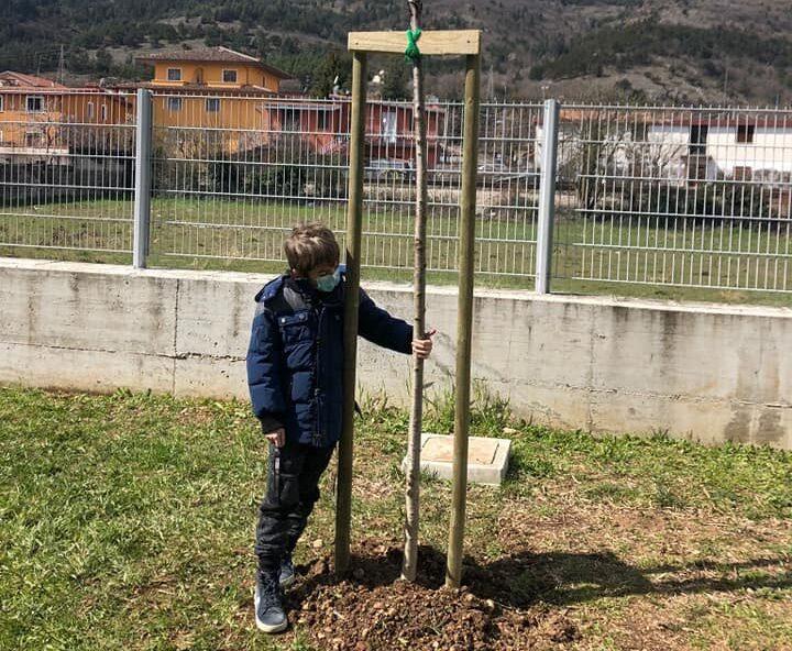 """Piantato un nuovo albero nel giardino della scuola """"A. Persia"""" di Avezzano: """"Segno di speranza e di ripartenza"""""""