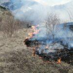 """Incendio nei boschi delle """"Surienti"""" ad Aielli, evitato il peggio grazie ai Vigili del Fuoco e ai volontari"""
