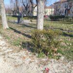 """Piazza Torlonia nel degrado, il sindaco """"mette in mora"""" l'azienda"""