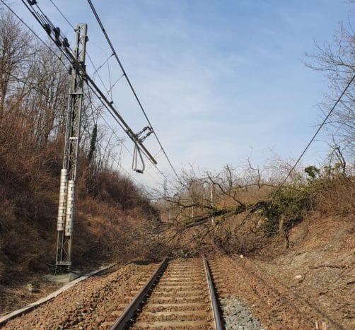 Albero sui binari, traffico ferroviario in tilt sulla Roma-Avezzano, le proteste dei pendolari