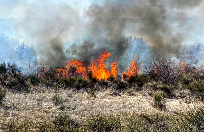 """Incendio a Pescina. Sindaco Zauri: """"non capisco chi continua a far del male al nostro territorio"""""""