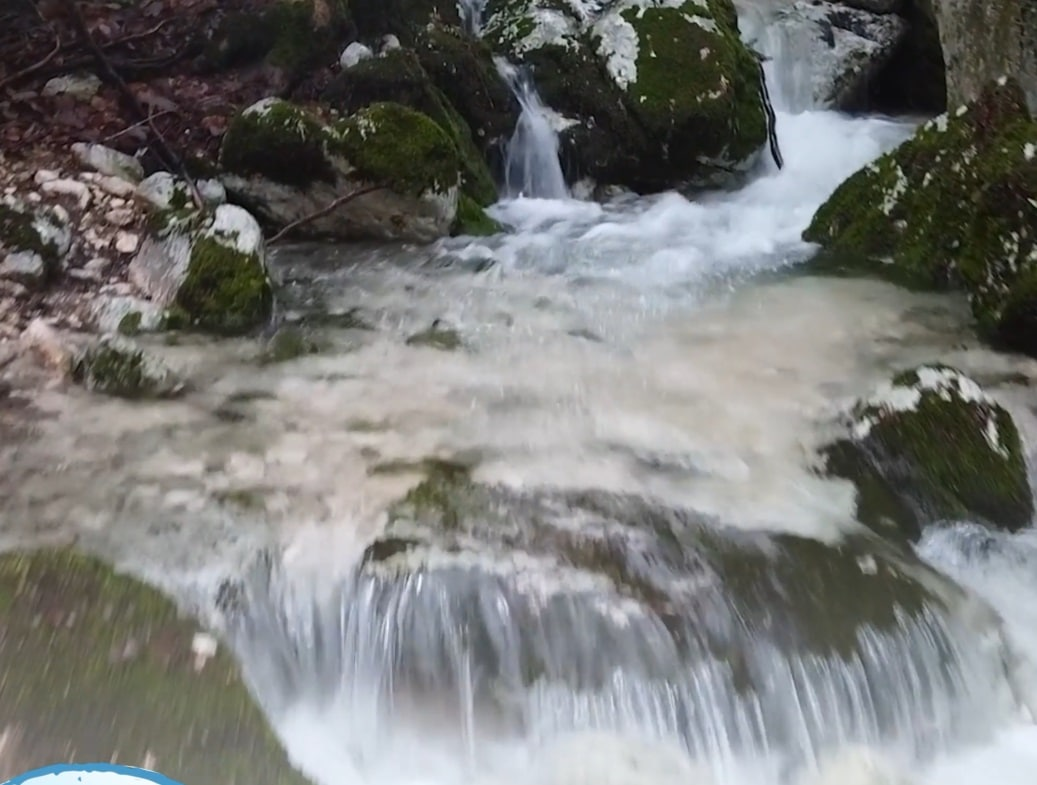 Messaggio del Presidente Cannata del Parco Nazionale d'Abruzzo per la Giornata Mondiale dell'Acqua (Video)