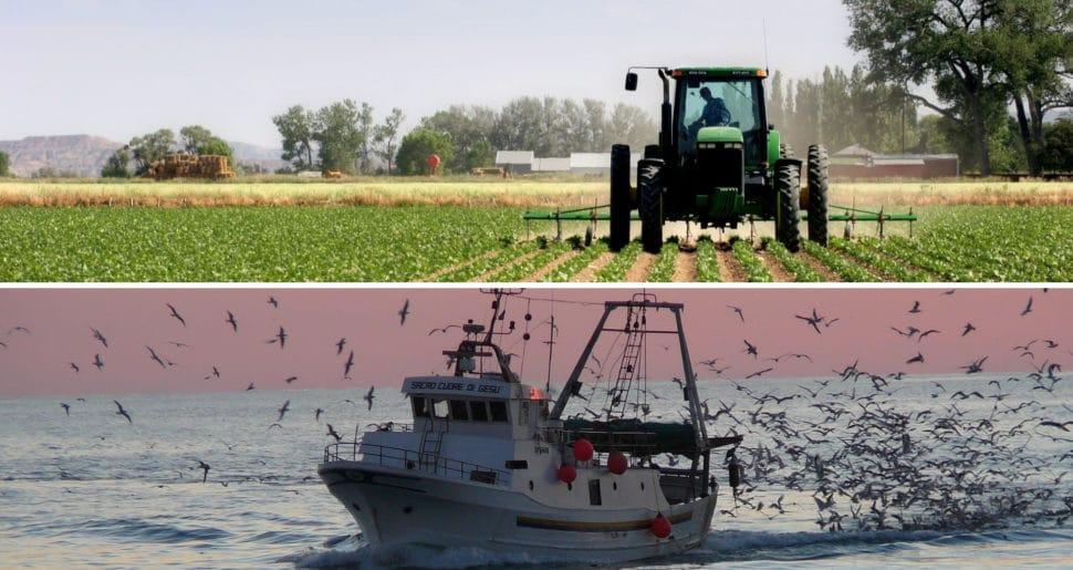 Agricoltura e pesca: nel Decreto Sostegni sgravio contributivo previsto anche per gennaio 2021