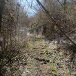 Sante Marie, puliti i sentieri della Riserva Naturale Grotte di Luppa
