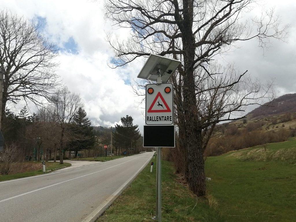 Investimenti stradali della fauna, il PNALM installa il secondo dispositivo di sicurezza AVC PS