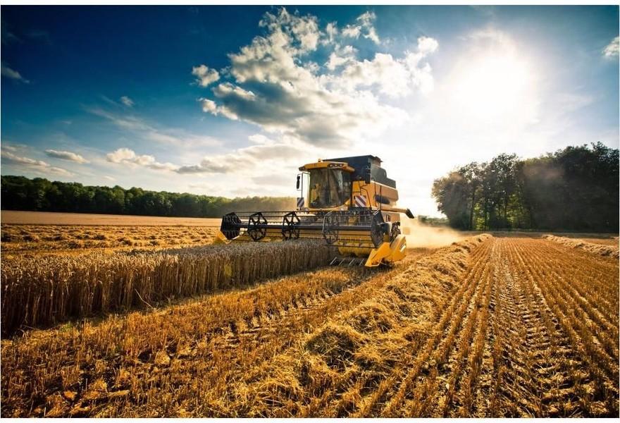 Esonero filiere agricole, pubblicate le istruzioni INPS