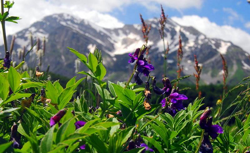 Domani il Parco Nazionale della Maiella diventa Geoparco Mondiale dell'UNESCO