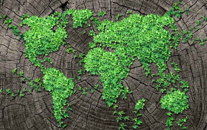 """Giornata mondiale della Terra: Campitelli: """"Tutelare il pianeta è nostro dovere"""""""