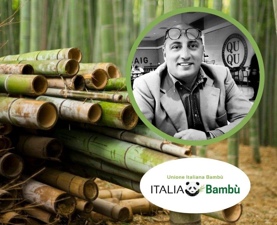 É possibile coltivare bambù nel Fucino? Lo abbiamo chiesto a Vincenzo Monaco presidente dell'Unione Italiana Produttori Bambù
