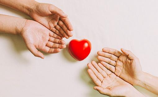 """Donazione degli organi: """"tavola rotonda"""" col Comune di Avezzano, AIDO e il Centro Regionale Trapianti Abruzzo e Molise"""