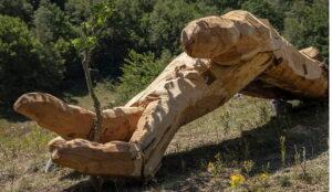 Ripristino opere vandalizzate nel Parco Nazionale d'Abruzzo Lazio e Molise