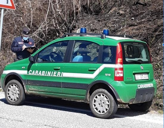 Denunciati due operai intenti alla manutenzione di barriere stradali per aver causato un incendio boschivo