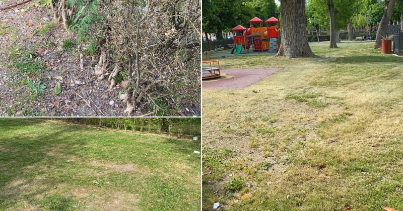 """Parco Torlonia nel degrado. Genovesi contro Di Pangrazio: """"ancora chiusa l'area per i bambini"""