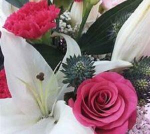 """Confcommercio Avezzano, per la """"Festa della Mamma"""" lotta alla vendita abusiva di fiori"""