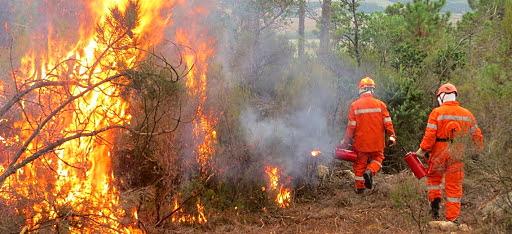 Visite mediche per i volontari impiegati nelle attività di spegnimento degli incendi boschivi