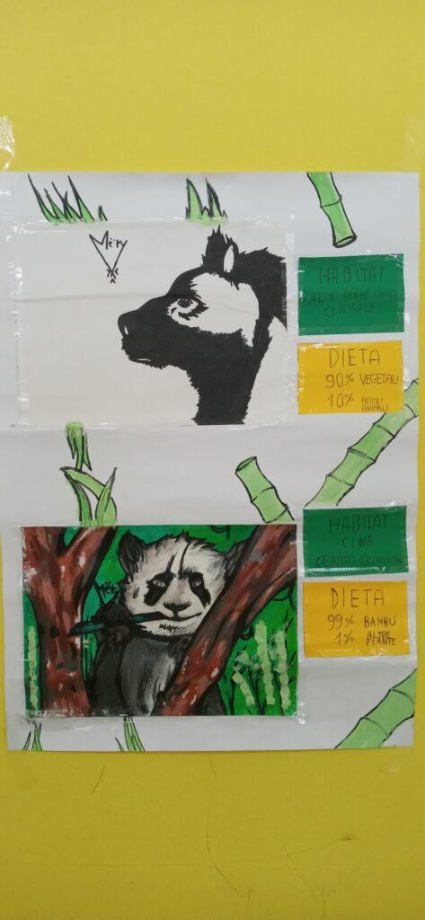 Concluse le attività didattiche proposte dal Centro di Educazione Ambientale del Parco nelle scuole