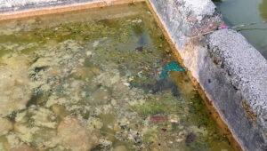 Inquinate le acque del fontanile di Pescina