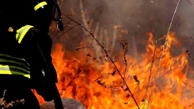 """Prevenzione incendi, scatta l'ordinanza del sindaco. Di Pangrazio: """"misura a tutela dell'ambiente e del patrimonio arboreo"""""""