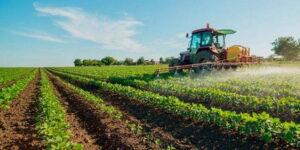 Decreto sostegni bis: 2 miliardi per rilanciare il settore agricolo e l'occupazione di donne e giovani