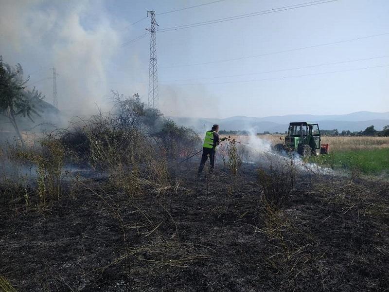 Sterpaglie in fiamme a Pescina, immediato l'intervento della Protezione Civile e dei Vigili del Fuoco