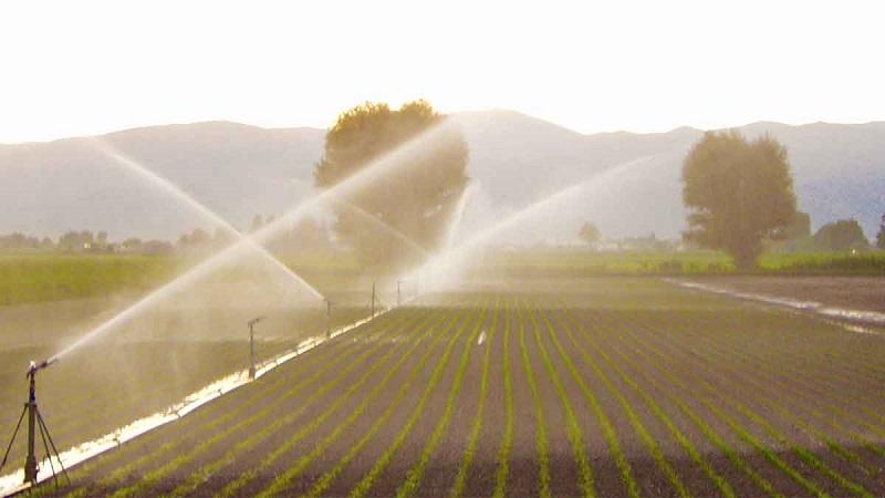 """Siccità, sospensione dell'irrigazione nel Fucino. Il Sindaco Lobene: """"Provvedimento a tutela degli agricoltori"""""""