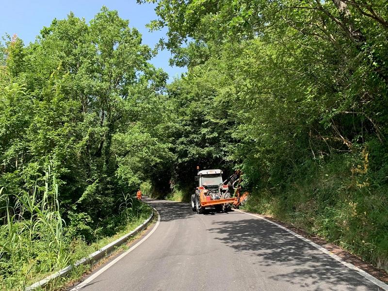 Taglio della vegetazione lungo la SP 87 per Meta ad opera della Provincia