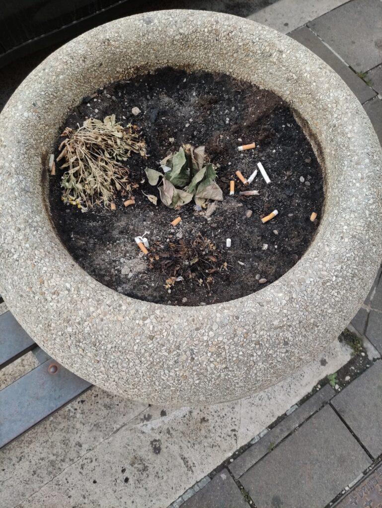 Vandali incendiano le fioriere di una panchina ad Avezzano centro