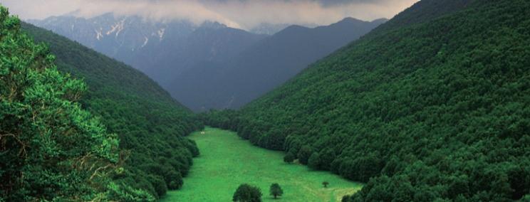 La prima riserva naturale statale compie 50 anni, il 25 luglio i Carabinieri per la Biodiversità festeggiano con il pubblico