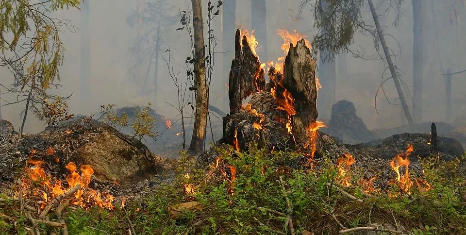Pericolo incendi, il Sindaco di Capistrello vieta di accendere fuochi di ogni genere