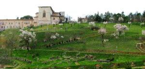 Orto Botanico di Collemaggio, la Provincia dell'Aquila pubblica bando per l'affidamento in concessione