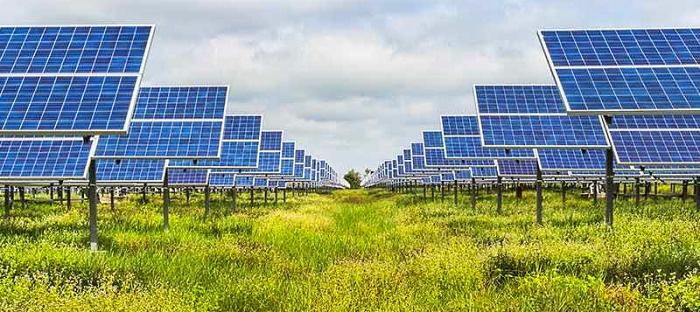 In Abruzzo al via la petizione Coldiretti Giovani contro i pannelli solari mangia suolo