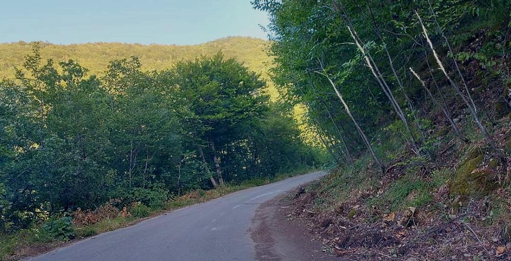 Ripulite dalle sterpaglie la strada per i prati S. Elia e la scarpata di via Maiure a Collelongo