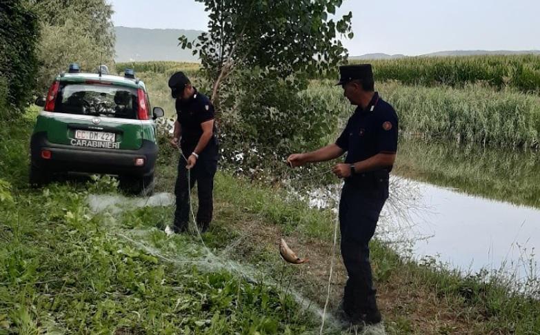 Bracconaggio ittico: Carabinieri Forestali sorprendono tre bracconieri nel Fucino che si danno alla fuga